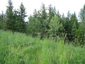 Build your dream home in one of Williams Lakes finest locations Williams Lake Cariboo Area image 6
