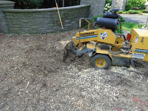 Tree Stump Grinding Service available