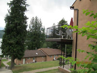 Two  bedroom condo on shuswap Lake