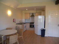 3 Bedroom flat for rent in Gants Hill part dss accepted with guarantor