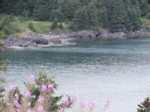 …1.4 ACRE OCEANFRONT..INCREDIBLE VIEWS..AVONDALE. St. John's Newfoundland image 6