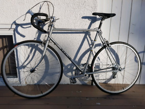 Vintage Sekini 12 Speed Road Bike - Restored