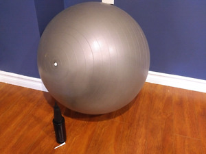 Exercise ball and pump, $10 obo