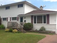 New 2 bedroom furnished basement apartment