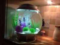 BiOrb Halo Fish Aquarium