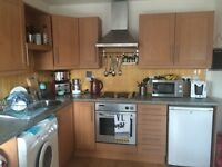 Kitchen units for Sale £125 only