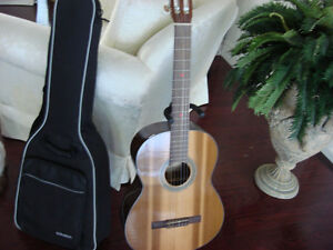 Cort Guitar with Case - like new