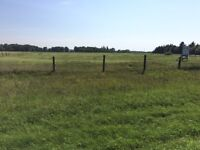 16.5 acre lot for sale in Carberry