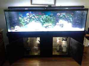 New price 125 gallon factory drilled aquarium -fish tank with/ac
