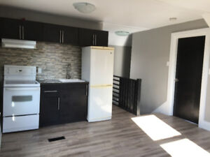 RENOVATED DOWN TOWN ONE BEDROOM APARTMENT! UNL. WIFI!!