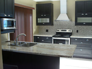 Upscale Kingston Home near Downtown/Hospitals/Waterfront