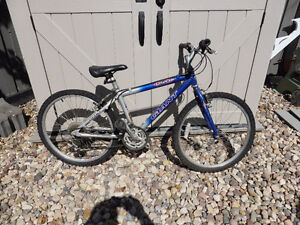 Youth's Giant 21 Speed Mountain Bike