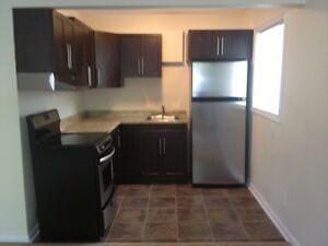 Newly Renovated, Downtown Bachelor Apartment for Rent
