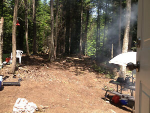 Hunting lot in algonquin highlands for sale Hunt camp W permit Peterborough Peterborough Area image 4