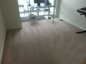 Carpet Steam & Shampoo Cleaning- @ Multiple Locations FREE Quote Oakville / Halton Region Toronto (GTA) image 4