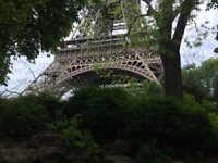 French speaking student available (tutor/conversation/childcare)