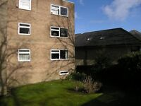 Flat 16 salter Lane , Sharrow , S11