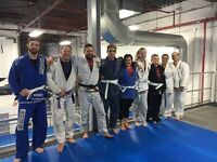 Martial Arts Classes (Brazilian Jiu Jitsu)