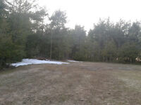Attractive 75 Acres Farm/Bush land For sale
