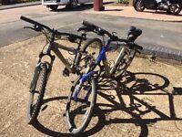 2 x Trek 4300 mountain bikes
