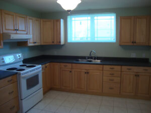 Must see 2,000 sq. ft. lower duplex! Utilities included!