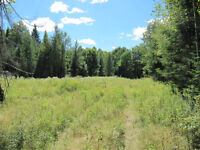 25 ACRES CLOSE TO TOWN