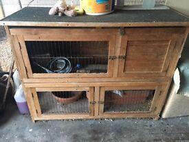 Rabbit boxes/hutch