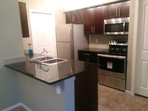 Gorgeous 2 bed 2 bath for rent near rabbit hill