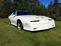"""Last Chance"" Very Clean 1989 Trans AM GTA, 5.7 litre TPI"
