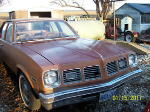 Good 250 Motor, Drivetrain, Interior, frame and could be restore