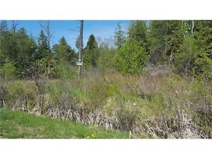 2.938 Acres in the Lovely Neighbourhood of Richardson Woods