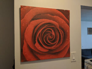 Canvas Wall Art, photo frame FOR SALE - $5