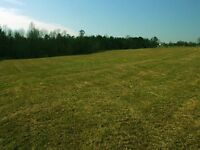 Looking for 1+ Country acres to Build on!