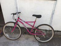 Mountain bike large