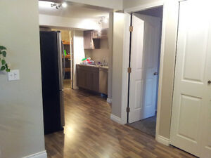 2 Bdrm Sunlight basement suite in Castlegar