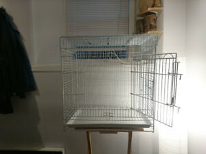 Bird Cage and Accessories +  Travel Carrier (best offer)