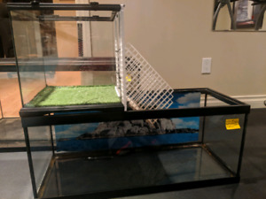 Aquarium for turtle and reptile