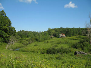 200 acres of mountains, forest and field land with small River