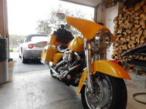 Harley Davidson Road King FLHRS 2005