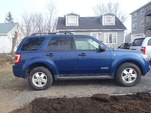 TWO TO CHOOSE FROM 2008 Ford Escape XLT SUV, Crossover 4X4