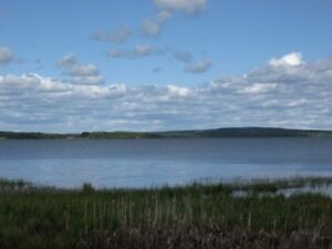 36 acres on Lakefront!