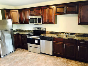 DELUXE LARGE 2 BDRM APT GREAT LOCATION IN CH'TOWN