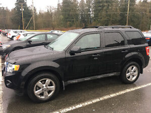 2010 Ford Escape XLT SUV best price ever.