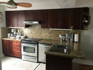 USED KITCHEN CABINETS WITH GRANITE COUNTERTOP and BACKSPLASH