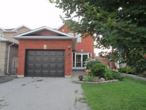 Bright, modern, detached - full house with finished basement