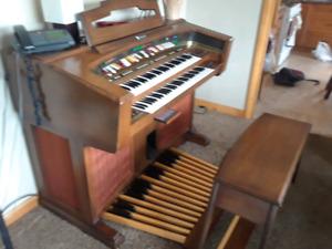 FREE  organ