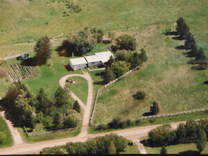 3 acres with house, fenced for horses for sale by Pigeon Lake