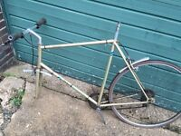 Puch Pacemaker large frame 5 speed bicycle.