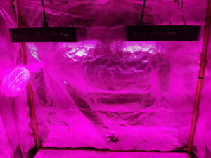JS Keep Growing- Led Full Grow Tents & Equipment