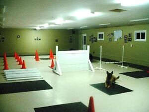 K-9 Komfort Inn Basic Obedience Classes in February